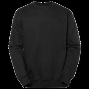 PW Sweatshirt  r h