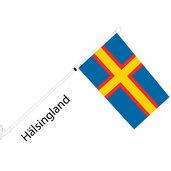 Regionsset Hälsingland
